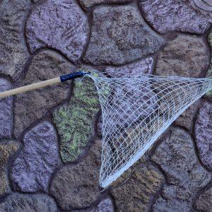 تور کبوتر | نوین پت شاپ