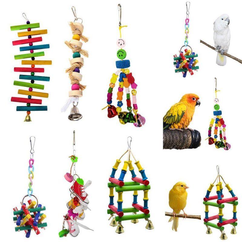 اسباب بازی پرندگان | نوین پت شاپ