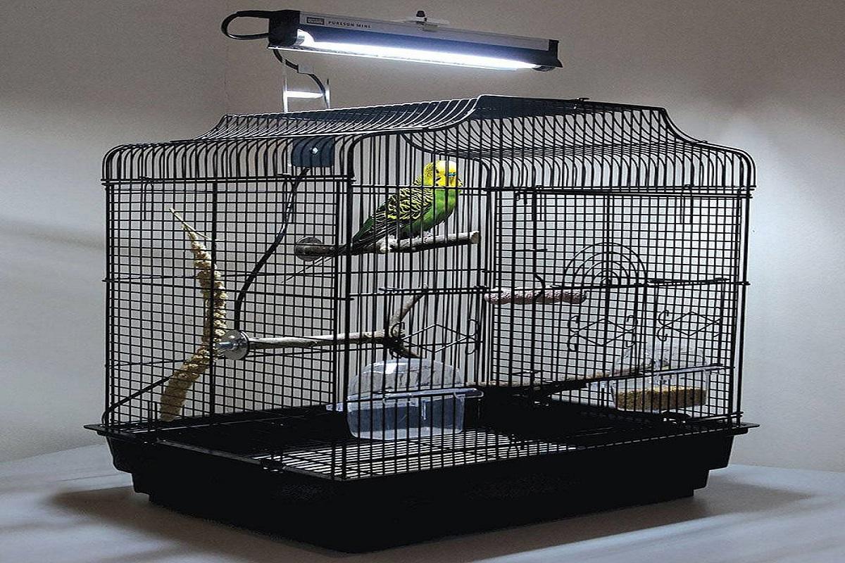 نور قفس پرنده خانگی | نوین پت شاپ